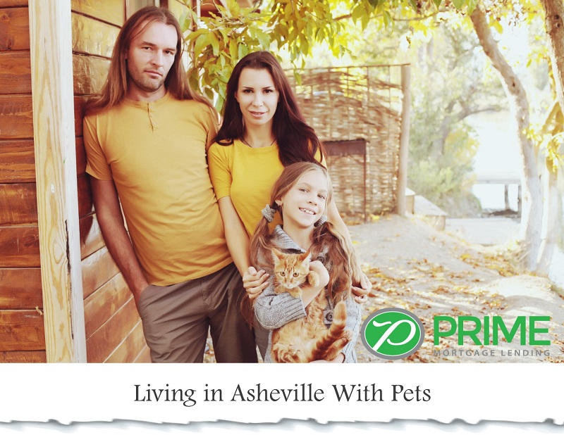Living in Asheville With Pets