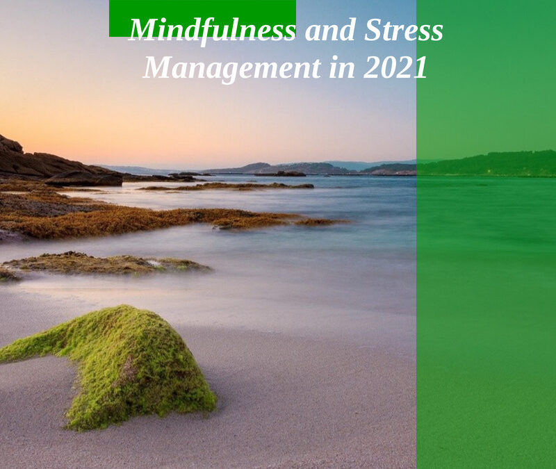 Mindfulness and Stress Management in 2021